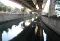山下橋から見る中村川
