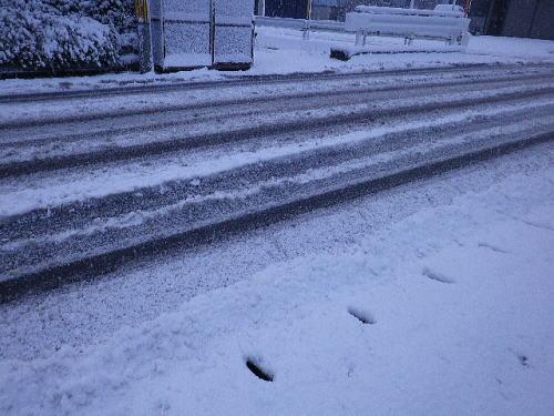 雪 2016 1 20-2