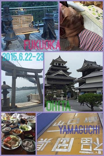 2015おもひで (11)