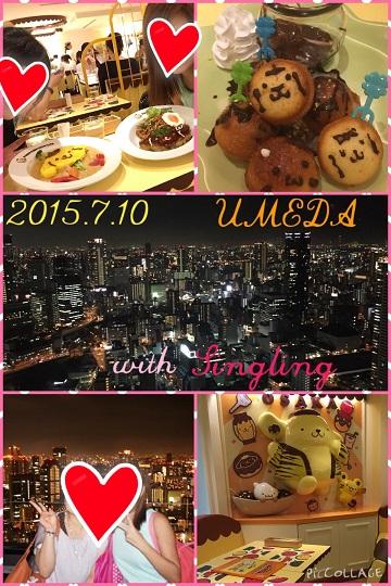 2015おもひで (3)