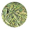 緑茶(不発酵茶)