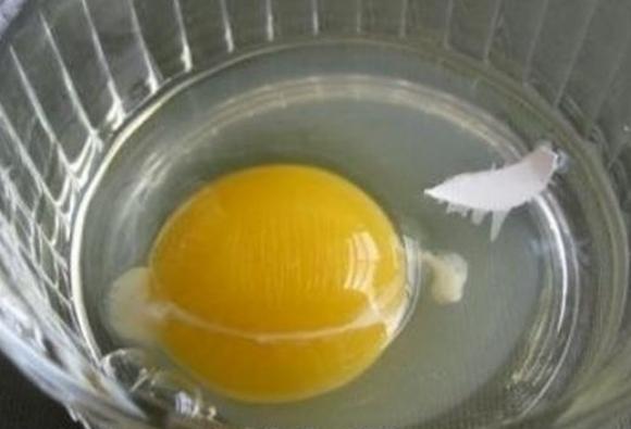 卵を割った時に殻が!