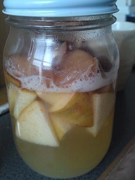 はちさんのゆるスキDiary-りんご酵母2