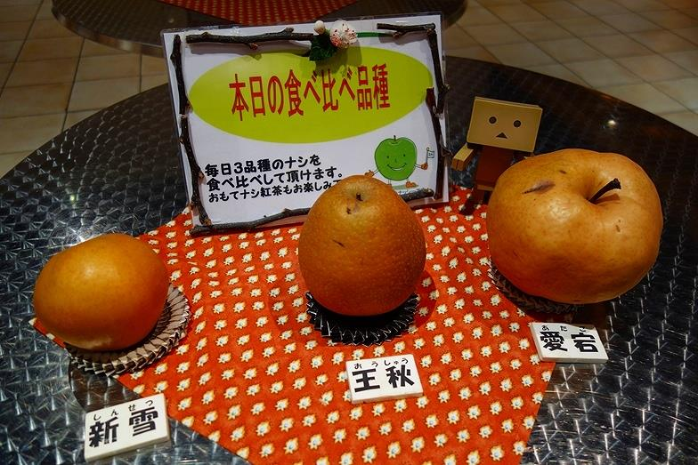 17鳥取県 鳥取二十世紀梨記念館_E