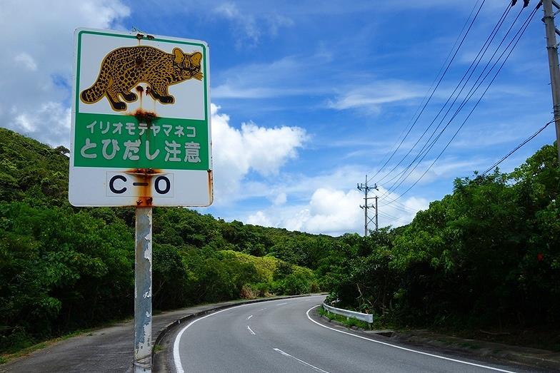 75沖縄県 西表島_E