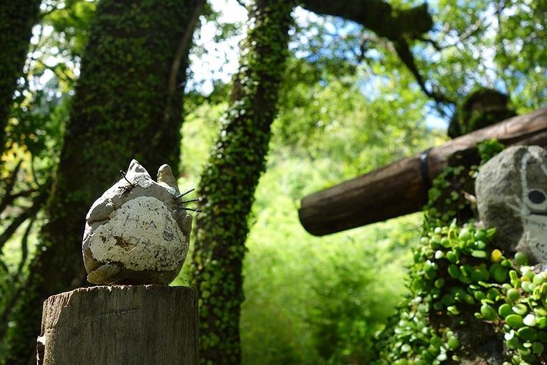 大分県 トトロの森_E