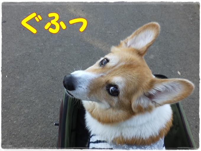 12-31DSCF4613.jpg