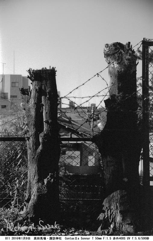 諏訪神社811-40