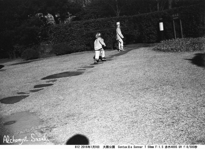 大隈庭園812-23