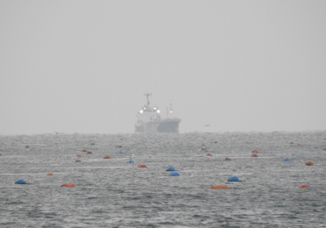 塩屋漁港2015-12-26 079 (640x448)