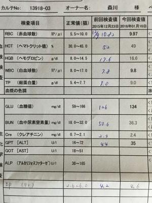 血液検査110