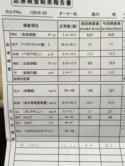 検査結果2月