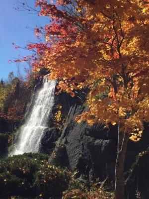 滝野すずらん公園の紅葉1