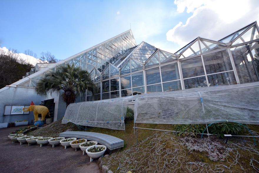 花の文化園のピラミッド(1)