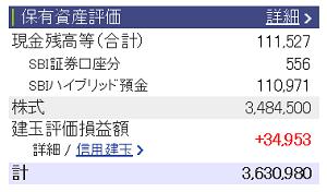 評価損益20151221