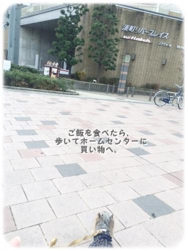 image3 0202