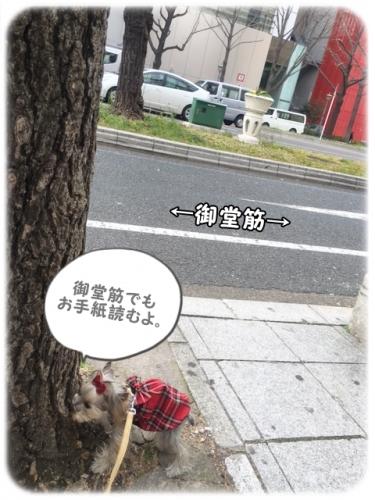 IMG_9725.jpg