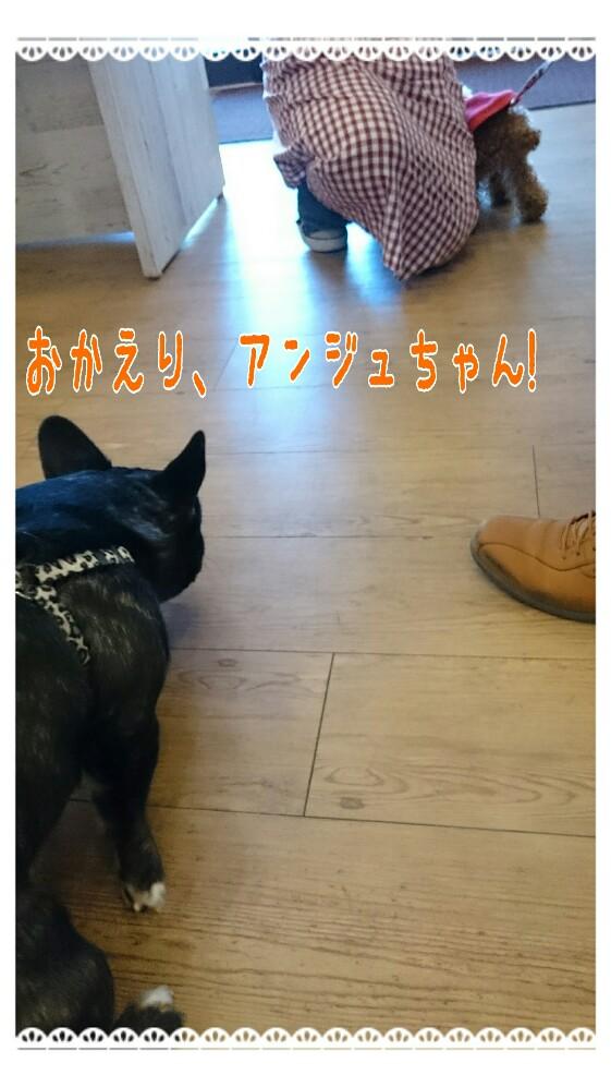 20160125122127112.jpg