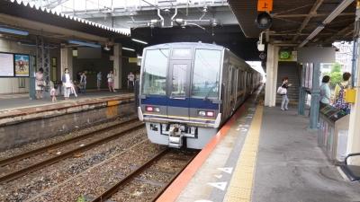 P1030714.jpg