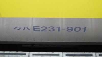 P1040811.jpg