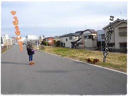 20160111-4.jpg
