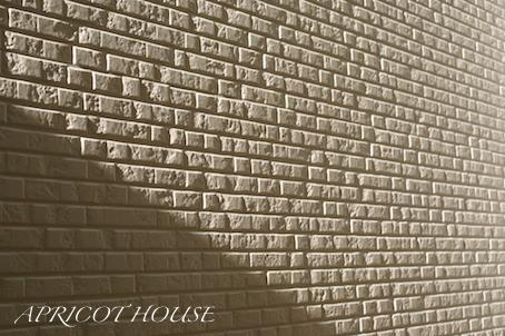 151210冬至壁