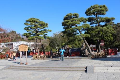 0050:神奈川県立近代美術館鎌倉館 鶴岡八幡宮(左に美術館)