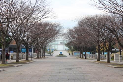 0055:葛西臨海公園レストハウス 臨海公園中央のメインロード