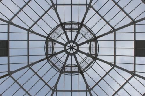 0056:葛西臨海水族園 ドームを内側から見上げる