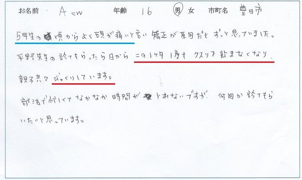深田あゆ 片頭痛 - コピー