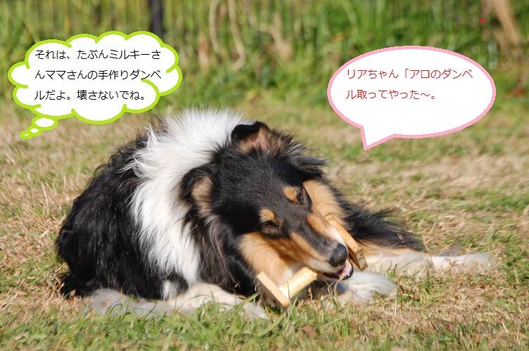 DSC_0944_edited.jpg
