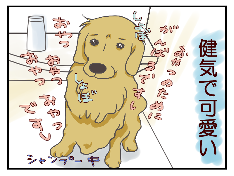 20160110-4.png