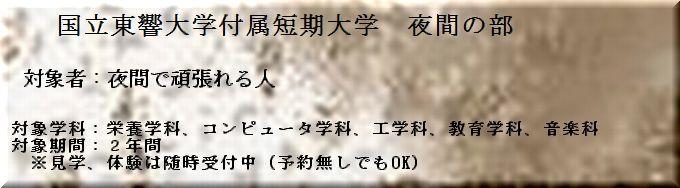 Tokyo_yakan.jpg