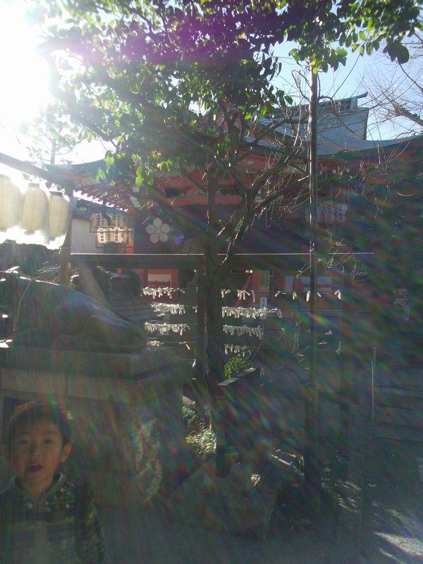 sanpo_20151230013510b3e.jpg