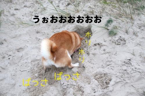 砂を掘るアスカ