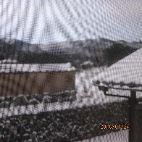 2016年1月24日雪景色