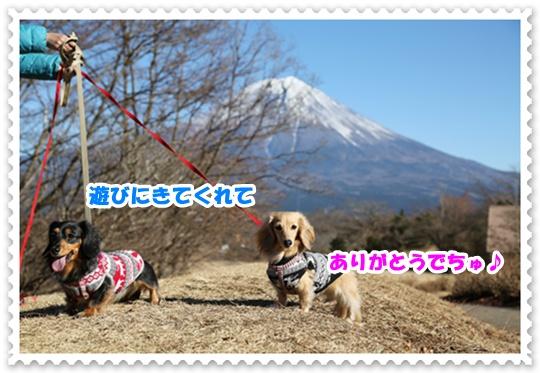 DS7A0594.jpg