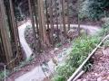 151129善峯寺から杉谷方面へカーブをこなして上る