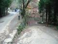 151129本山寺駐車場下の分岐から延びる道