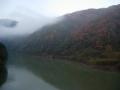 151212宇治川の色づく木々