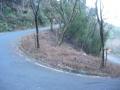 160109谷山林道を西笠取方面へ