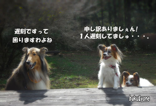 マリンちゃんとワンディーズ_1