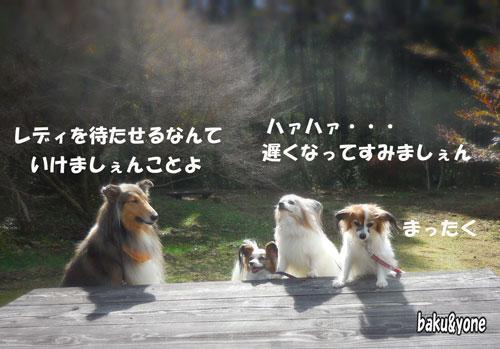 マリンちゃんとワンディーズ_2