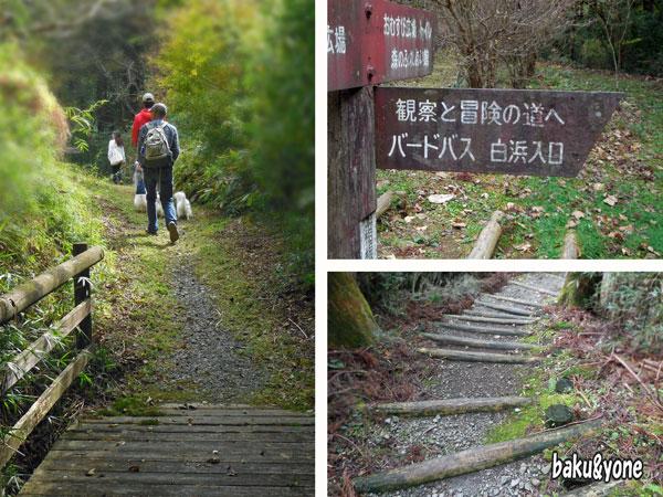 お散歩_2