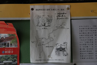 shimane_20151213_15.jpg