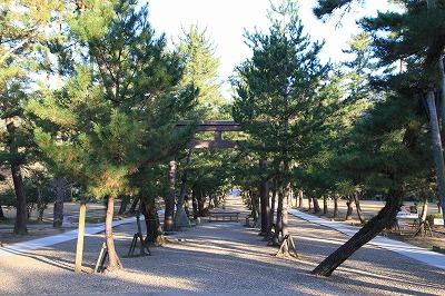 shimane_20151218_04.jpg