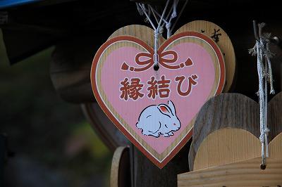 tottori_20151212_13.jpg