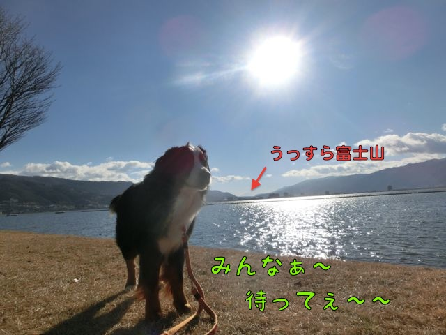 CIMG8710_20151227221326762.jpg