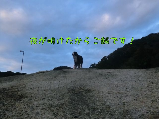 CIMG8850_20160103131558621.jpg