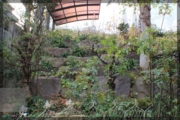 庭 ロックガーデン 20151216